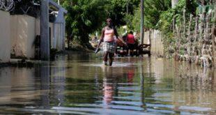 Sin manglares, 18 millones más de personas sufrirían inundaciones cada año