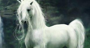 El unicornio, un animal mitológico que nunca pasa de moda